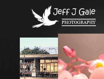 jeffjgale Photography